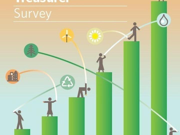 Green Bond Treasurer Survey mtime20200421100230