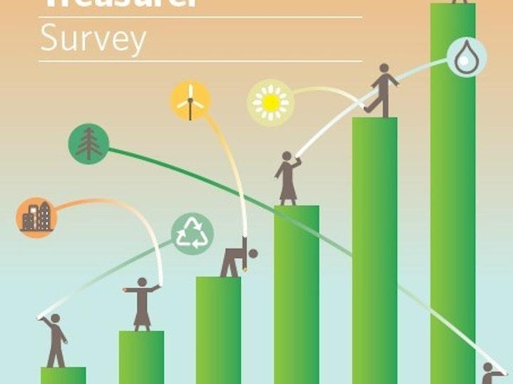 Green Bond Treasurer Survey