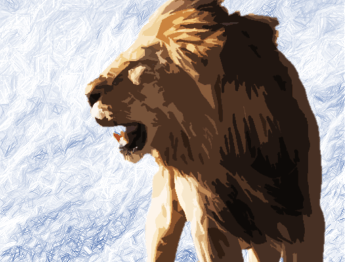 JMCR Lion mtime20200225145243