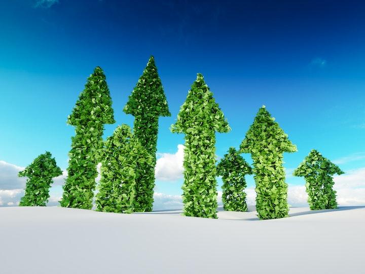 Sustainable leadership 8800 mtime20191206120912