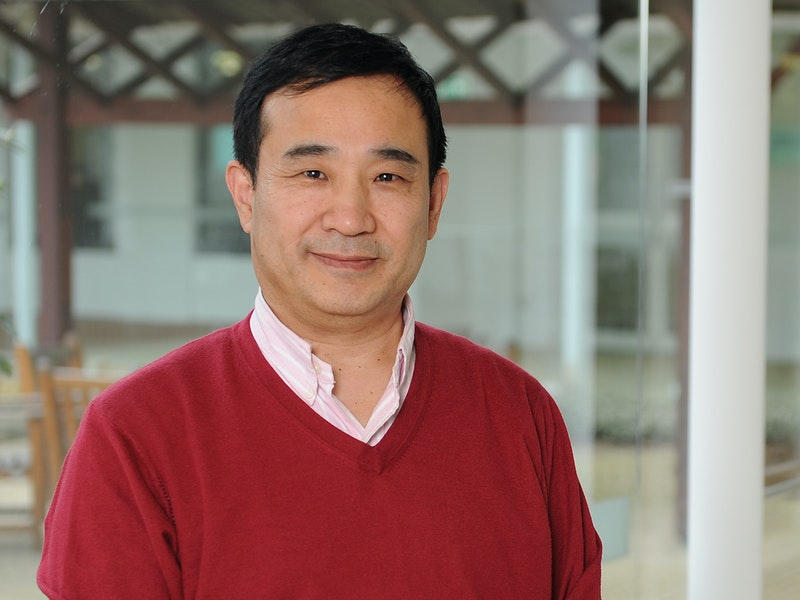 Professor Yinshan Tang